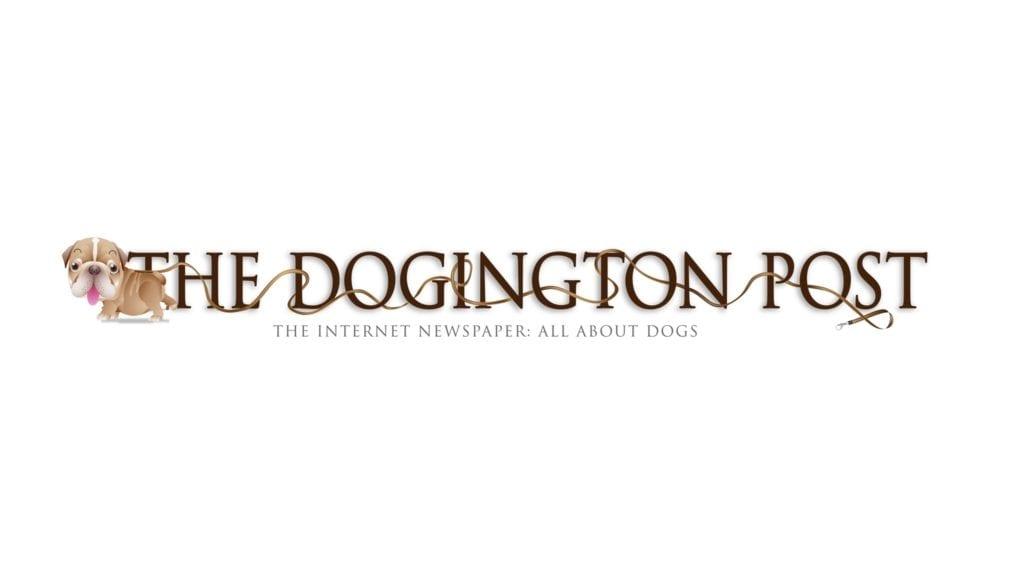 Dogington Post