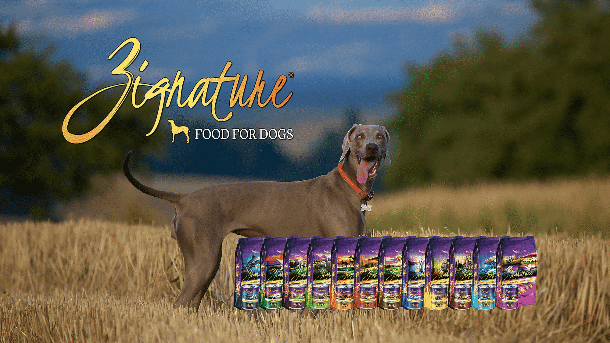 Home - Zignature Food For Dogs