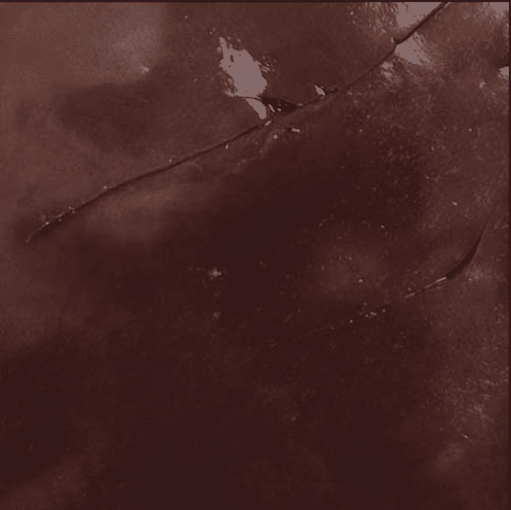 Screen Shot 2019-08-28 at 2.54.16 PM