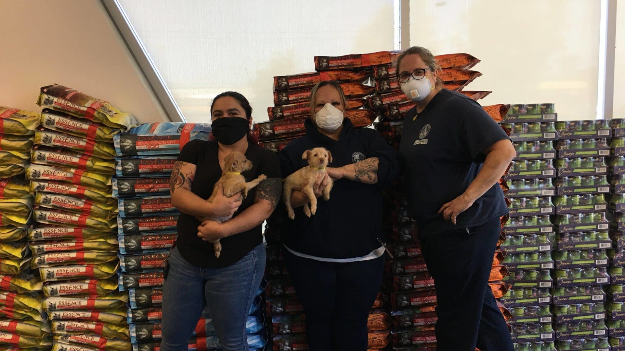 LA Animal Shelter